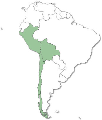 The Rest of South America - No Trips Yet